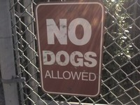 No_dogs